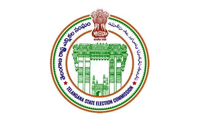 EC Disqualifies 534 Ward Members In Nalgonda District - Sakshi