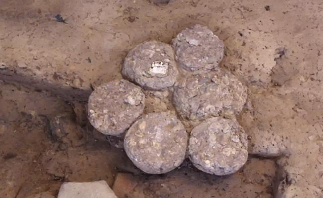 Laddoos Made With Cereals And Pulses Found During Harappan Site Excavation - Sakshi
