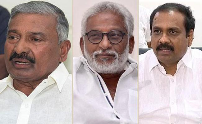 Minister Peddireddy Said 90 Percent Guarantees Fulfilled CM Jagan - Sakshi
