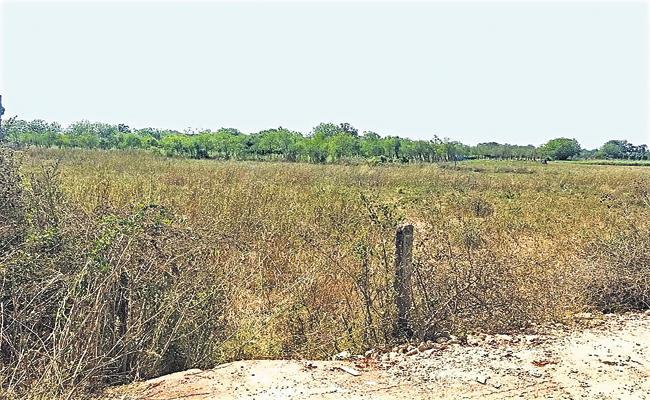 Lingamaneni Ramesh Attack On Lands of minorities - Sakshi