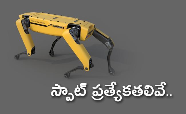 Robot Dog Guarding The Shell Company - Sakshi