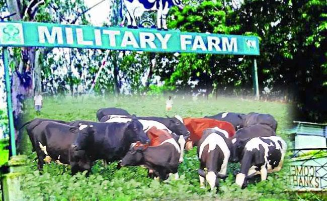 Indian Army Closes Military Farms After Service of 132 Years - Sakshi
