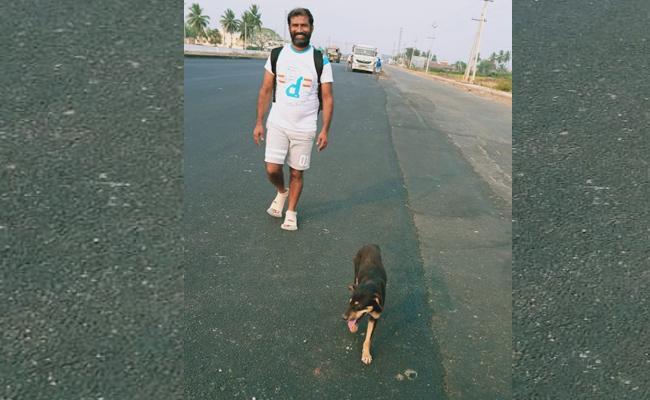 Dog Walks From Jangareddygudem To Tirumala