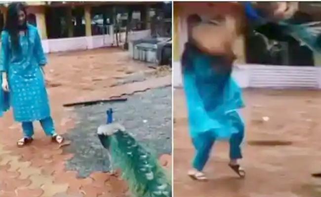 Digangana Suryavanshi Attacked By Peacock Video Goes Viral - Sakshi