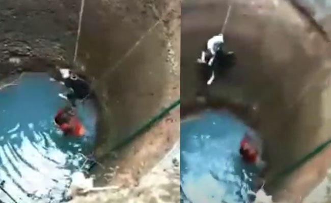 Daring Animal Rescuer Rajani Shetty Saves a Dog - Sakshi