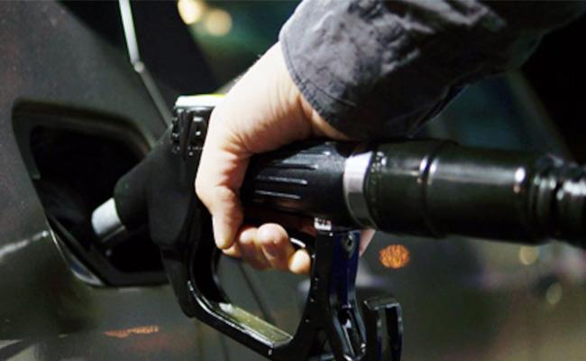 CBIC chief assures excise duty cut on petrol, diesel - Sakshi