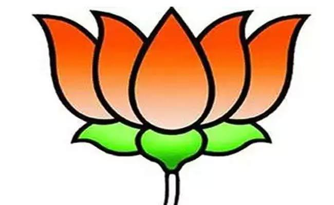 Fact Finding Committee Report On BJP Leaders - Sakshi