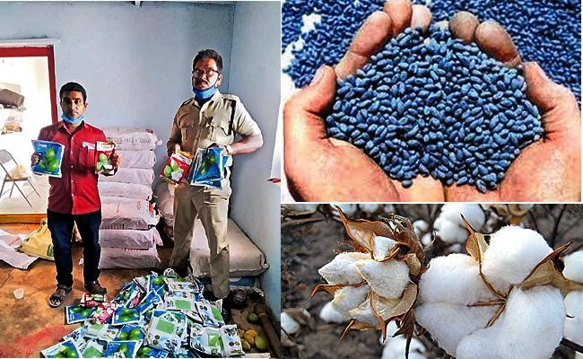Fake Seeds Mafia In Telangana Sakshi Special