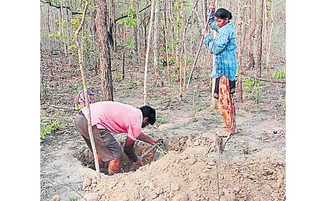 Sarpanch Couple Doing NREGA Works In Warangal District - Sakshi