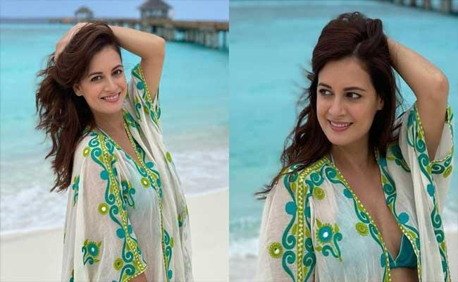 Dia Mirza Clarification Over Her Pregnancy Before Getting Married - Sakshi