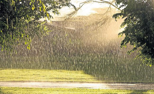 Light to moderate rains in the next 48 hours - Sakshi