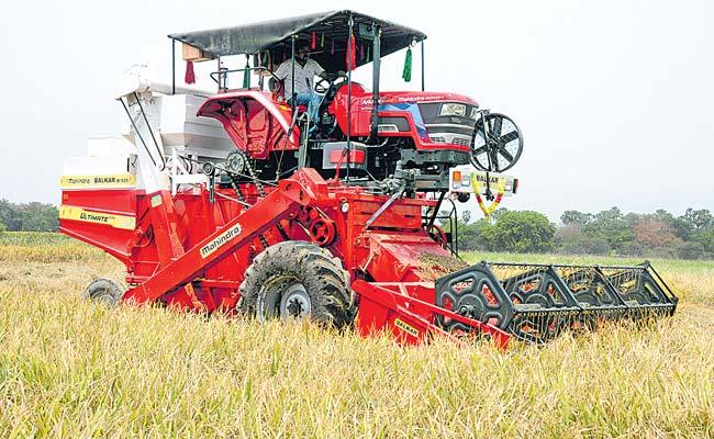 Bumper Yasangi Yield Could End As Procurement Dampener - Sakshi