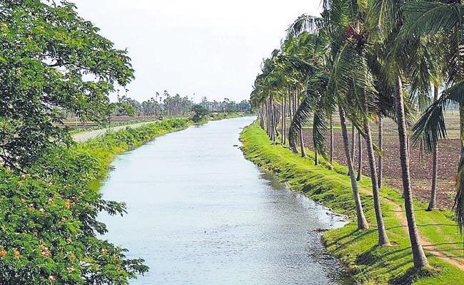 Assurance to the Godavari Delta - Sakshi
