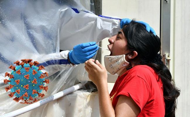 14986 New Coronavirus Positive Cases Recorded In AP - Sakshi