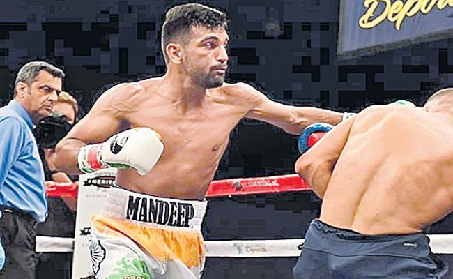 Mandeep Jangra Indian Boxer Wins Maiden Professional Bout In USA - Sakshi