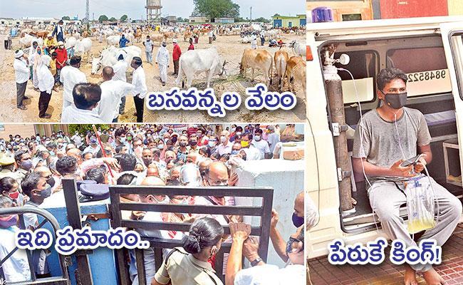 Local to Global Photo Feature in Telugu: Adilabad Bullocks Market, King Koti Hospital - Sakshi