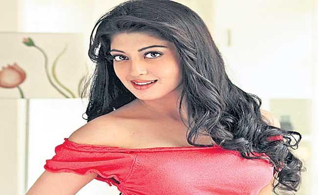 Pranitha To Donate Oxygen Concentrators to Hospitals - Sakshi