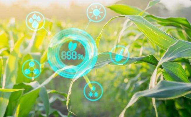 agri startups growth increasing in india 2021 - Sakshi