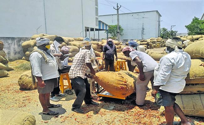 Ongoing chilli purchases in AP - Sakshi