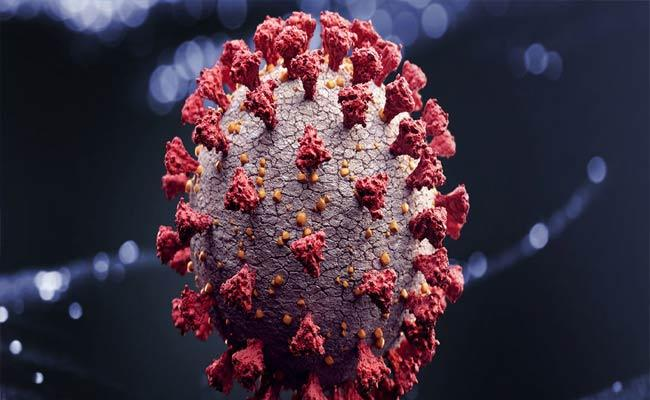 Sakshi Interview About Coronavirus