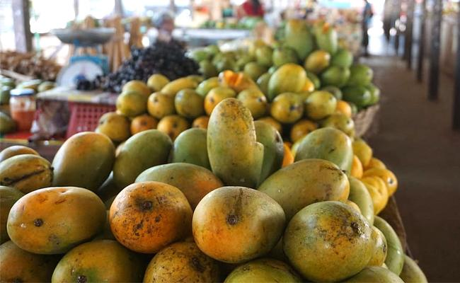 Coronavirus Outbreak: Mango Exports Hit, Farmers Affected - Sakshi