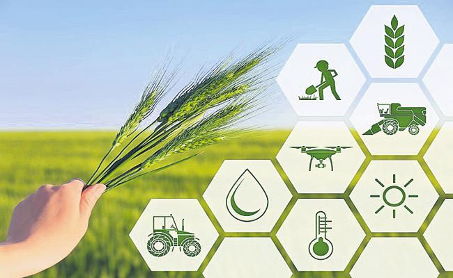 AP Govt moving forward with the aim of developing agricultural sector, farmers - Sakshi