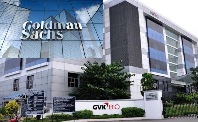 Goldman Sachs To Buy 33 Percent Stake In GVK Biosciences - Sakshi