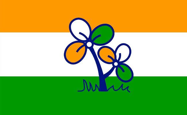 Main Reasons Behind Mamata Banerjee Sweep In Bengal BJP Surge Assembly Elections 2021 - Sakshi
