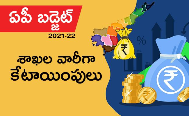 AP Budget 2021: Allocations More Than Last Year - Sakshi