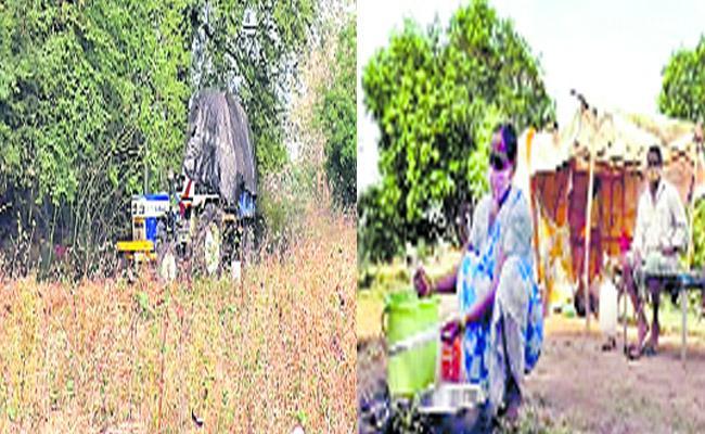 Covid Victims Faces Isolation Problems WardhannaPet Warangal - Sakshi