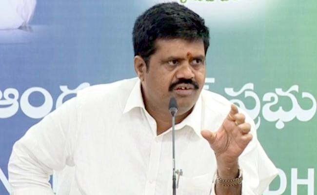 Avanthi Srinivas Slams Chandrababu Over Visakha Steel Plant - Sakshi