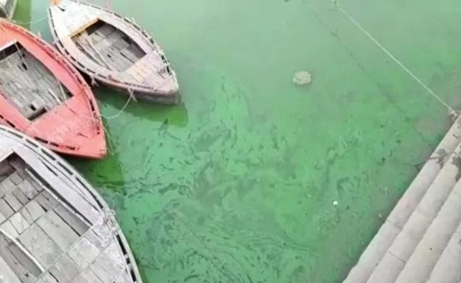 Ganga River Turns Green During Covid Second Wave In Varanasi - Sakshi