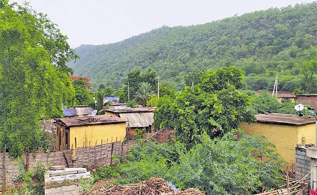 Chinthala Girijanagudem is a Corona Free Village - Sakshi