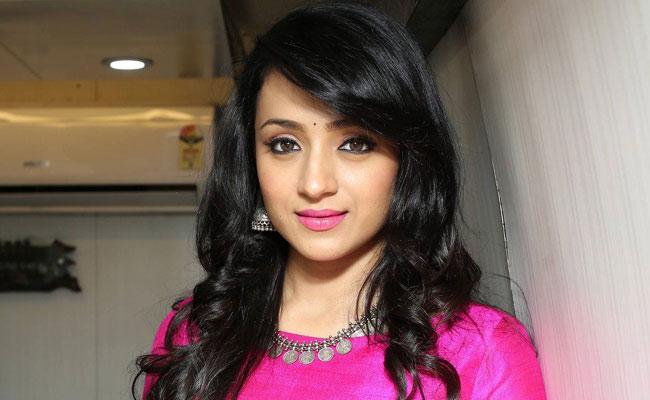 Trisha Marriage With Businessman Soon Rumours Goes Viral - Sakshi
