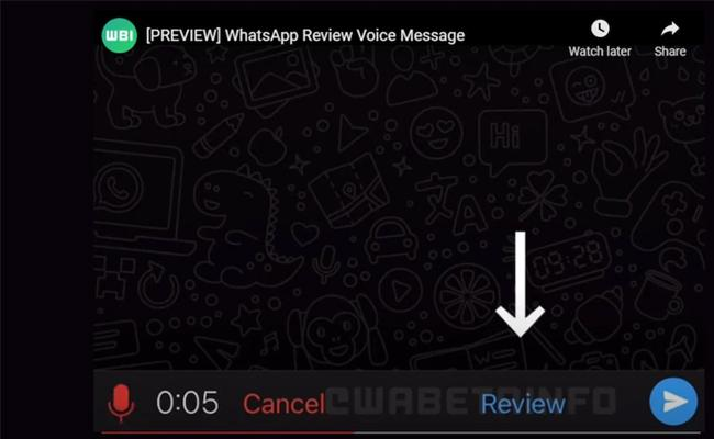 WhatsApp Voice Messages Review Tool Being Testing - Sakshi