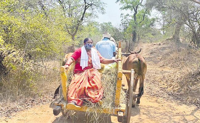 MLA Seethakka Provides Groceries Tribes Over Coronavirus Lockdown - Sakshi