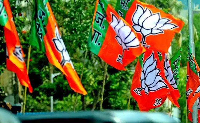 BJP Lose Lingojiguda Division Saffron Party Self Goal - Sakshi