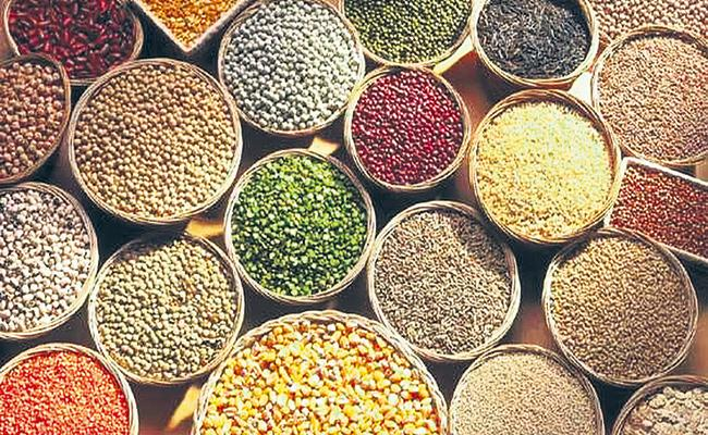 International Food and Agriculture Organization appeals to people about Small grains - Sakshi