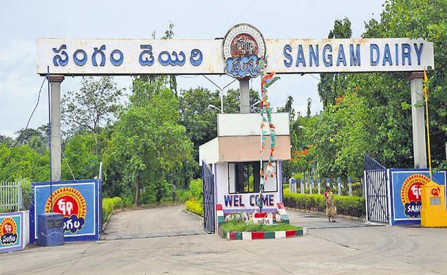 Sangam Dairy activities are intact - Sakshi