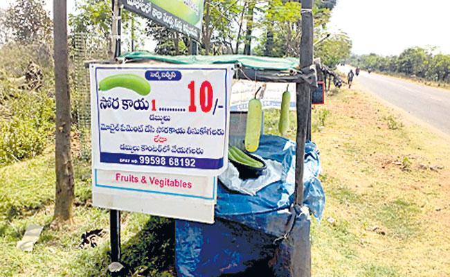 Organic Vegetable Farmer Yadmala Malla Reddy: Unmanned Store, Agri Tourism, Jagtial - Sakshi
