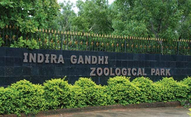 Closure Of All Zoo Parks In Andhra Pradesh - Sakshi