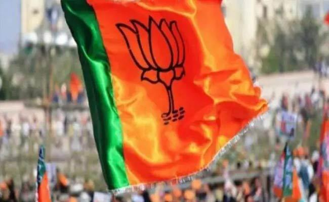 UP Panchayat Elections: BJP Lags Behind SP In Strongholds - Sakshi