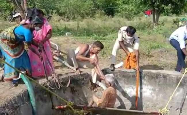 Police Rescue Elderly Woman Who Fell Into Well - Sakshi