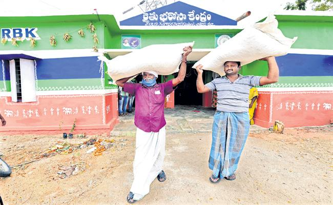 Discounted rice seeds from Rythu Bharosa Centres in AP - Sakshi
