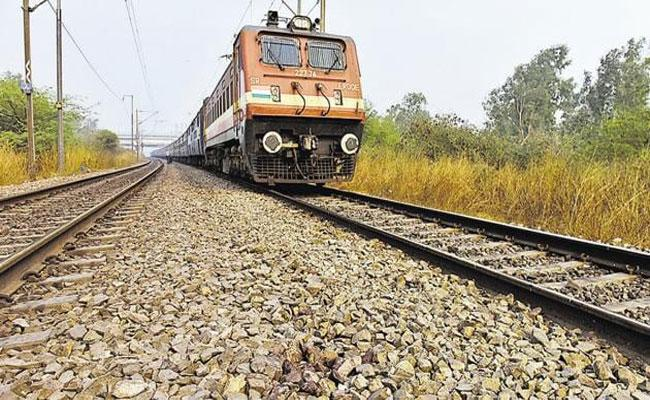 12 Big Cats Killed Accidents By Dumping Leftover Food On Railway Tracks - Sakshi