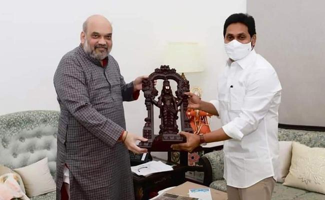 CM YS Jagan Mohan Reddy Meeting With Amit Shah - Sakshi
