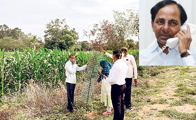 CM KCR Phone To GADA TO Plant New Trees In Tupran Gajwel Highway - Sakshi