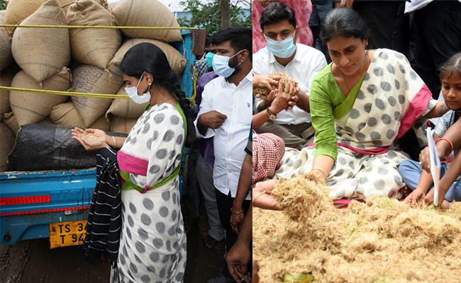 Farmers Told Their Problems To YS Sharmila In Palepalli - Sakshi