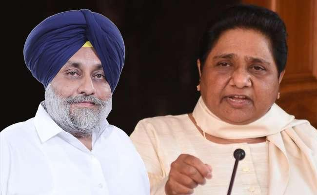 SAD And BSP Farm Alliance For Assembly Elections In 2022 At Punjab - Sakshi