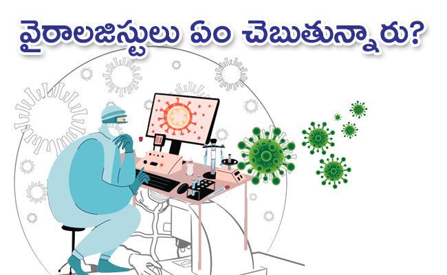 Can Coronavirus Origins be Detected Here Is What Virologist Says - Sakshi